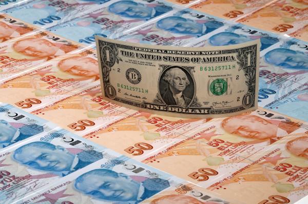 الليرة التركية تشهد أكبر تراجع لها أمام الدولار