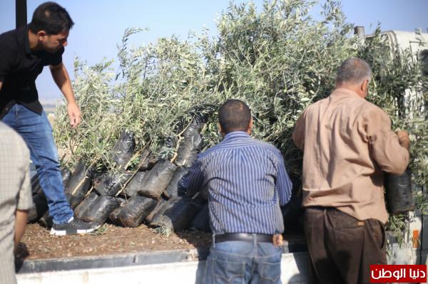 اتحاد جمعيات المزارعين الفلسطينيين ينفذ العديد من النشاطات في بلدة جيوس