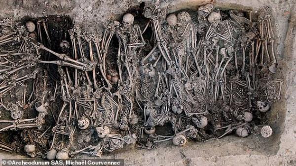 """قصة """"الموت الأسود"""" الذي قضى على 200 مليون شخص بأوروبا"""
