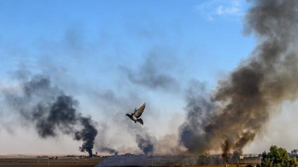 """الدفاع التركية: مقتل 174 مسلحاً كرديا منذ بدء عملية """"نبع السلام"""" بسوريا"""