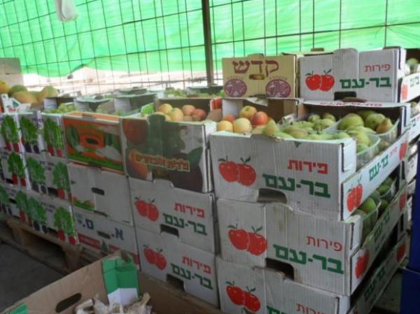 """جمعية حماية المستهلك الفلسطيني تدعو الحكومة للتوسع بمنع إدخال البضائع """"الإسرائيلية"""""""