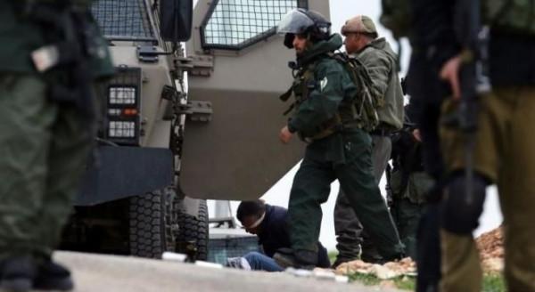 الاحتلال يعتقل أربعة مواطنين ومستوطنون يعتدون على مواطنة