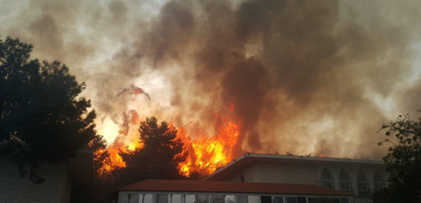 حماس: مُشاركة الفلسطينيين بإطفاء الحرائق دليل على الأخوّة الفلسطينية اللبنانية الراسخة