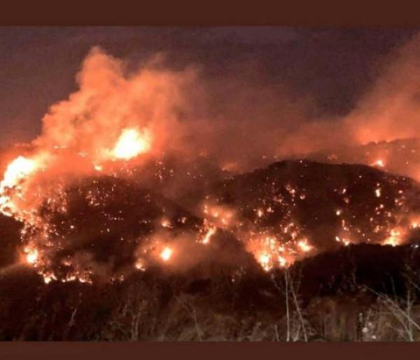 الهلال الأحمر الفلسطيني ومتطوعو الإطفاء بالمخيمات يساعدون في عمليات الإغاثة من الحرائق