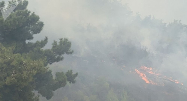 الدفاع المدني اللبناني: خطر تمدد الحرائق مازال قائما