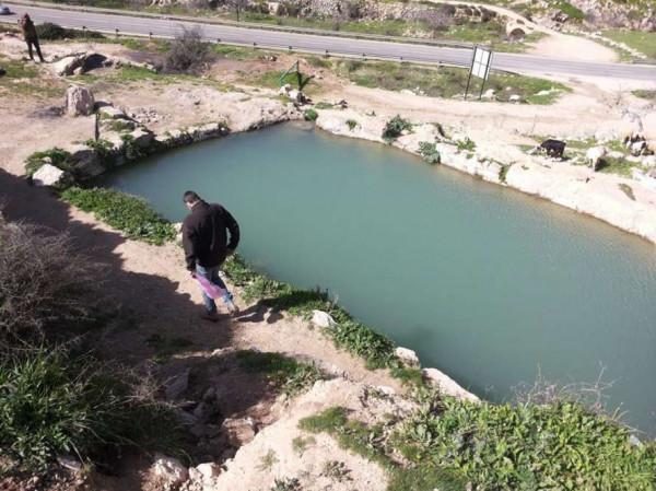 مستوطنون يقتحمون منطقة نبع الحنية شمال غرب بيت لحم
