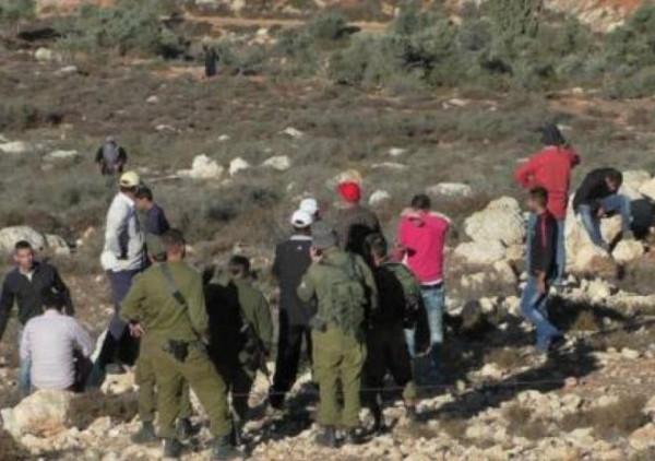 مستوطنون يمنعون المزارعين من قطف الزيتون شمال شرق رام الله