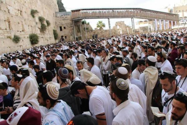 آلاف المستوطنين يستعدون لاقتحام المسجد الاقصى