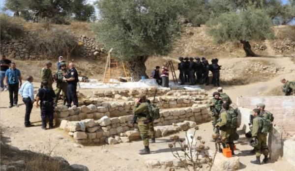 حملة إسرائيلية ممنهجة على المواطنين بالضفة لإفشال موسم قطف الزيتون