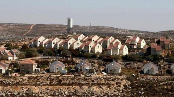 الخارجية: طرد المزارعين الفلسطينيين يهدف لتأسيس تجمع استيطاني جنوب غرب نابلس