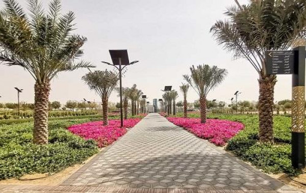 الحديقة القرآنية في دبي.. رحلة لاكتشاف النباتات المذكورة بالمصحف