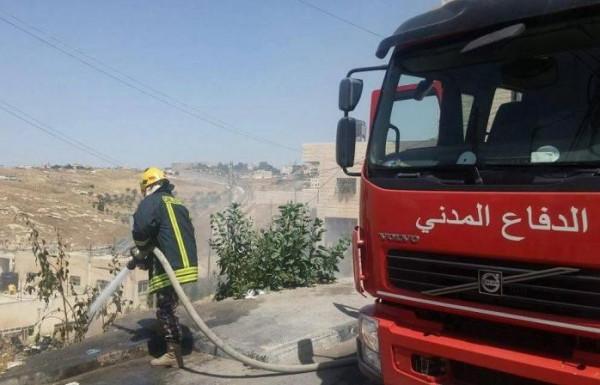حريق يلتهم نحو 250 شجرة زيتون جنوب جنين  9999005873