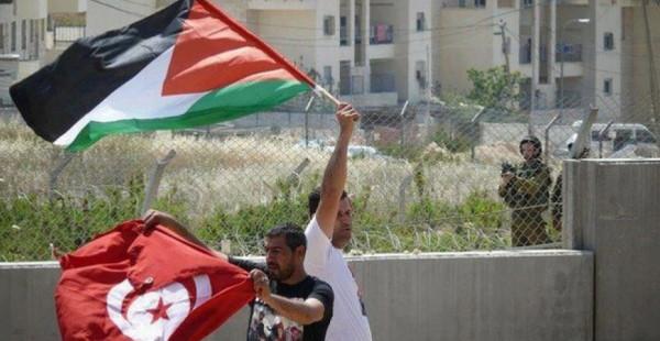 تونس تدين العدوان الإسرائيلي على القطاع وتجدد دعمها الثابت للقضية الفلسطينية