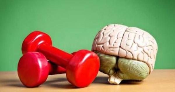الغضب والسعادة بيد دوائر فى المخ تتعرف بسرعة على المشاعر