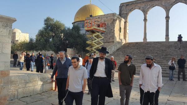 الإعلام الإسرائيلي: 339 مستوطناً اقتحموا باحات الأقصى هذا الأسبوع