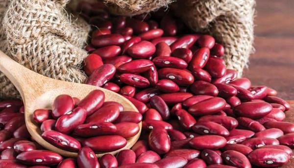 منها الفاصوليا الحمراء.. أطعمة قد تؤدي إلى المرض أو الوفاة