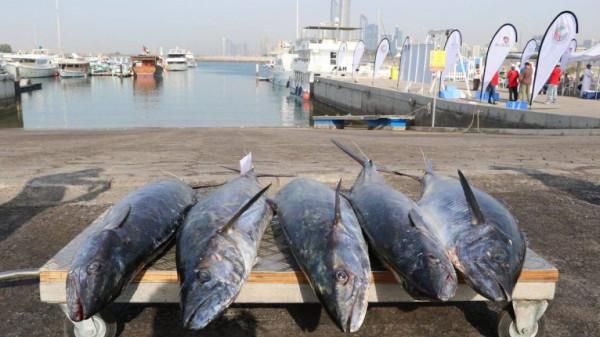 شاهد: بيع أغلى سمكة في العالم بـهذا السعر