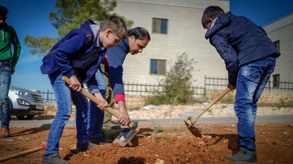 خريجو جامعة بيرزيت يشاركون في زراعة أشجار حرجية في الحرم الجامعي