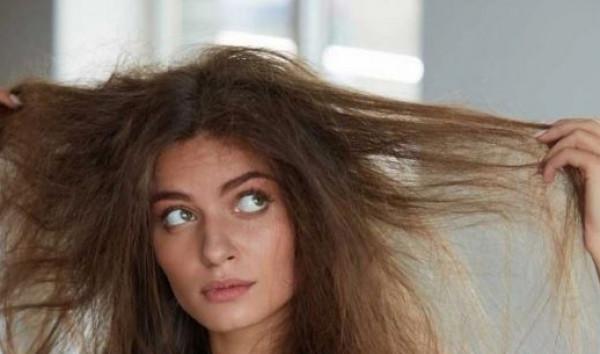 خلال يوم واحد.. وصفة سحرية لعلاج الشعر الجاف في المنزل