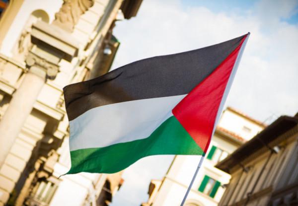 بعثة فلسطين لدى الأمم المتحدة بفيينا تحيي اليوم العالمي للتضامن مع الفلسطينيين
