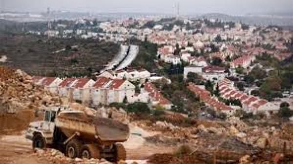 سلطات الاحتلال تمدّد قرار وضع اليد على أراضٍ في طولكرم وقلقيلية وسلفيت