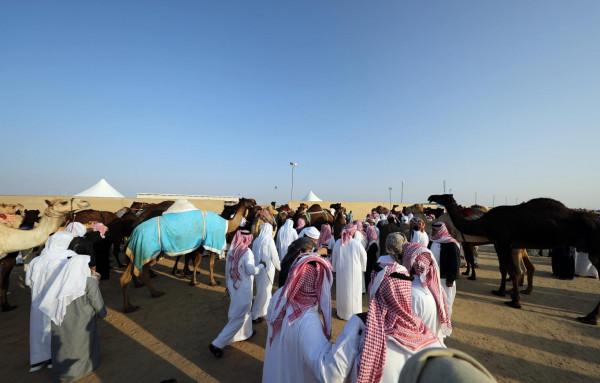 مهرجان الظفرة 2019 يجدد التقاليد التراثية ويرسخ الهوية الإماراتية