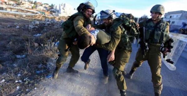 الاحتلال ومستوطنوه يعتدون على المواطنين بالخليل وبيت لحم