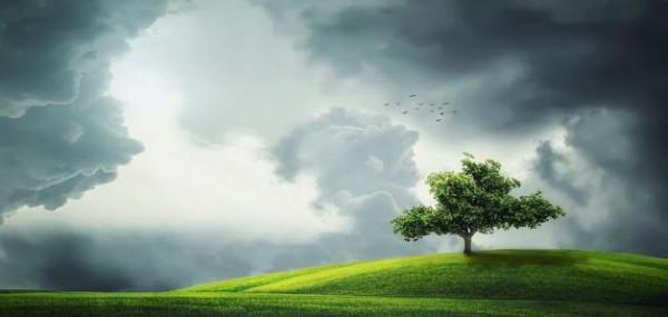 من أين عرف الملائكة أن آدم سوف يفسد في الأرض؟
