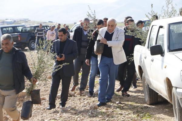 الفعاليات تزرع اشجار الزيتون في رأس العوجا بمناسبة يوم الشجرة