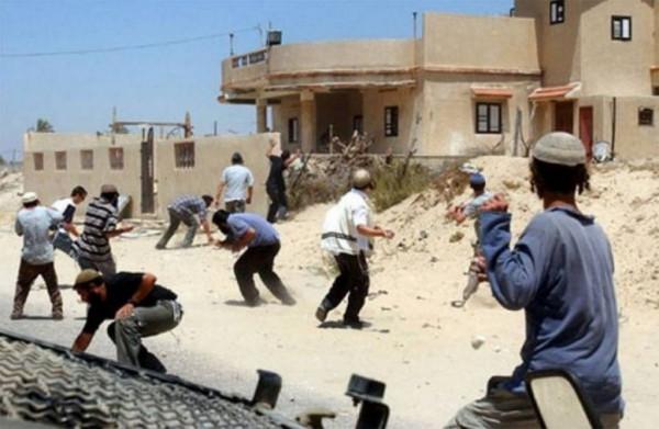 مستوطنون يهاجمون منازل المواطنين شرق الخليل