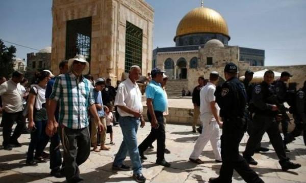 تقرير: 2019 الأعلى في اقتحام المستوطنين للمسجد الإبراهيمي منذ 53 عاماً