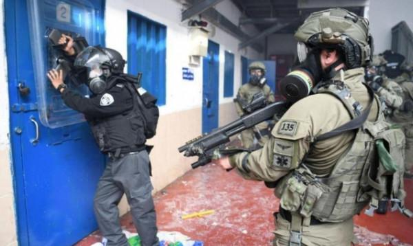 أسرى فلسطين: 11 عملية اقتحام للسجون منذ بداية العام