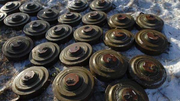 الأمن التونسي يعثر على كمية كبيرة من الألغام ومواد أولية لصنع المتفجرات