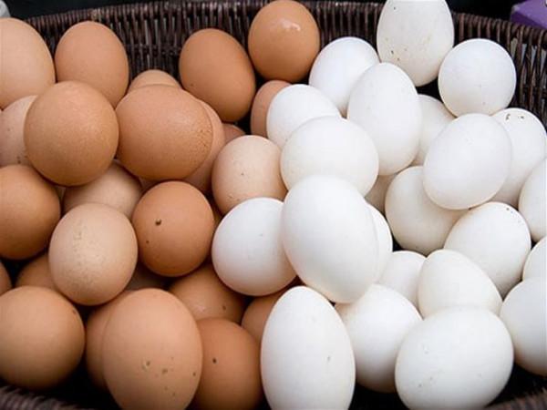 منها البيض.. هذه الأطعمة تجعلك أكثر سعادة