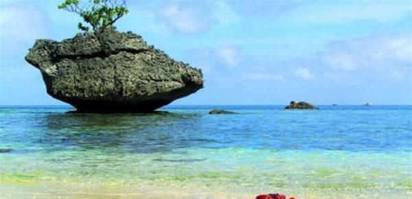 اكتشاف مذهل في جزيرة قد يعيد رسم خارطة الحياة