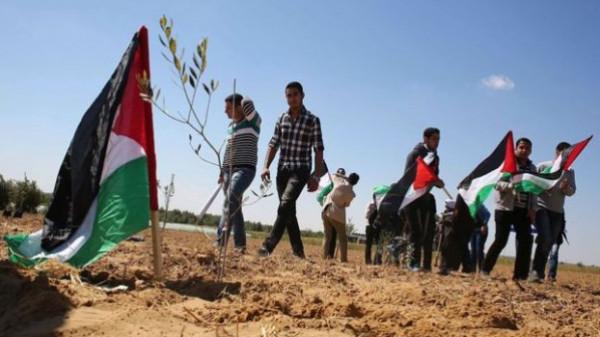 44 عاماً على ذكرى يوم الأرض الفلسطيني
