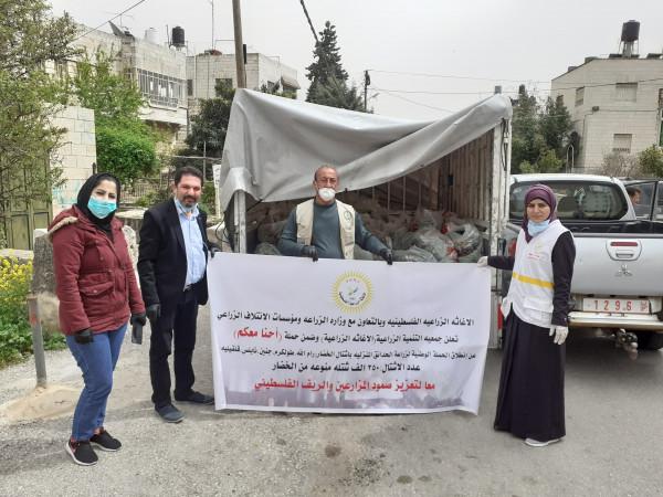 الإغاثة الزراعية تبدأ بتوريد الأشتال لقرى وبلدات محافظة رام الله