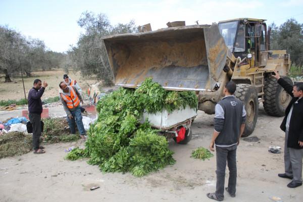 """""""الميزان: الاحتلال يستغل (كورونا) لتدمير المزروعات على امتداد السياج الفاصل شرق القطاع"""