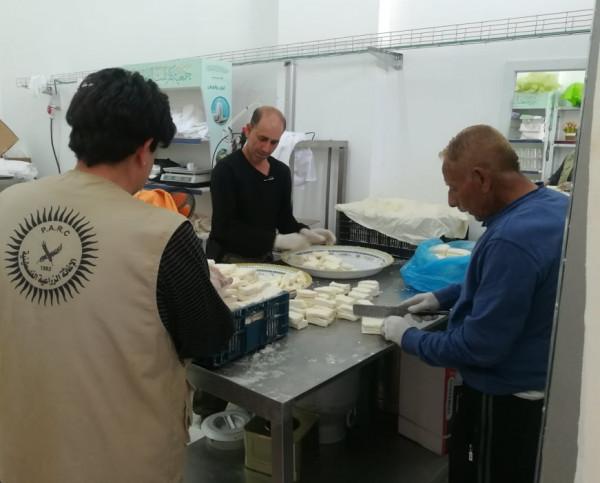 الإغاثة الزراعية تقوم بتسليم الأجبان في محافظة قلقيلية