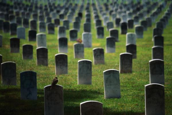 أول مدينة في العالم تحظر زيارة المقابر بقرار رسمي