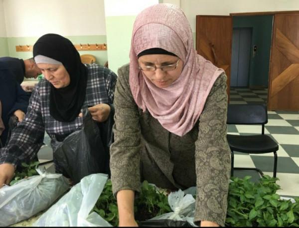 طاقم شؤون المرأة يطلق مبادرة لدعم عضوات المجالس المحلية في ظل جائحة (كورونا)