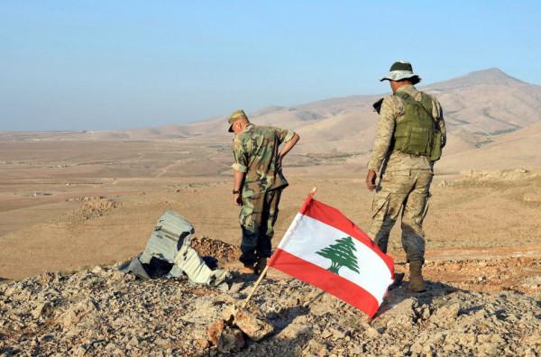 لبنان: إحباط عملية تهريب مخدرات ضخمة إلى تركيا