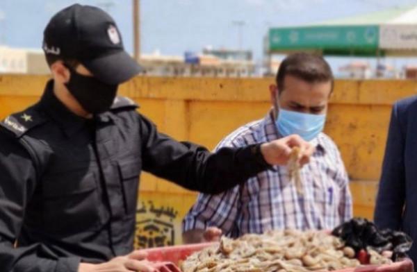"""القبض على بائع أسماك """"صراصير البحر"""" السامة في غزة"""