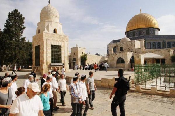 مركز حقوقي يدين استمرار اقتحامات المستوطنين لباحات المسجد الأقصى