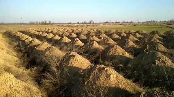 عمدة مدينة أوكرانية يحفر 615 قبرًا لسبب غير متوقع