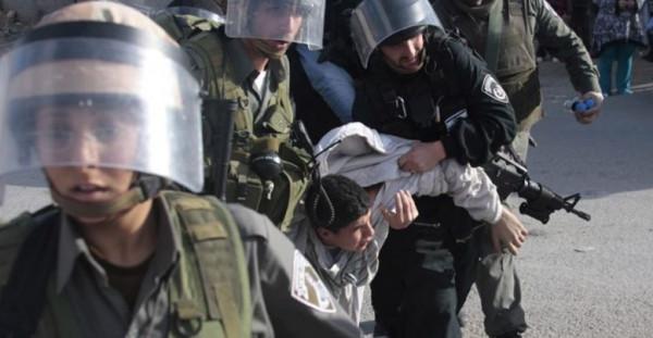 الاحتلال يعتقل ثمانية مواطنين من الخليل