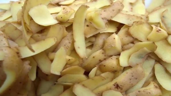قشر البطاطا كنز.. لن ترميه بعد الآن