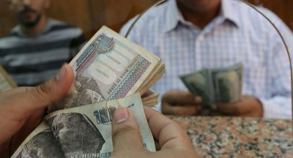 الدولار يواصل خسائره أمام الجنيه المصري