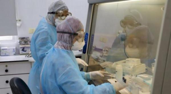 الصحة بغزة: إجراء 116 عينة خلال 24 ساعة الماضية ولم تُسجّل أية إصابات
