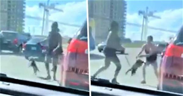 فيديو صادم لامرأة تسرق كلبا من سيارة وتستخدمه لهذا الأمر